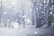 winter wonderland / by Eva Van Belle