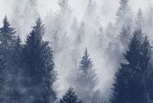 Refocus Northwest retreat / a creative retreat in the Pacific Northwest