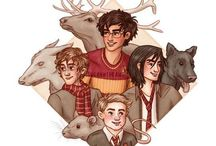 The Marauders & Lily Evans