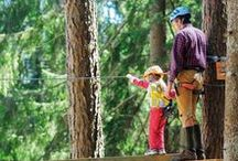 Passeggiate tra i boschi / Divertimento all'aria aperta a contatto con la natura
