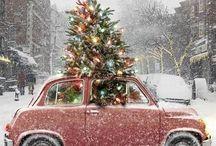 A Merry Little Christmas / È Natale tutti i giorni...