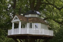 Houses: Tree Houses / by Patsy Rodriguez