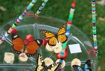 Preschool, Butterflies, insects