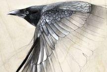 Bird - Art