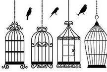 The Bird Cage / by Joy Comeau