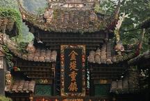Asian Sensation / by Joy Comeau