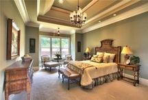 Tray ceiling paint design ideas