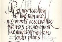 Calligraphy / Calligraphy - scrittura