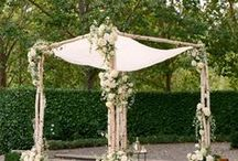 chuppah / by pot & box