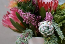 creative floral design / by pot & box