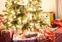Holidays / by Sarah Jimenez-Valdez