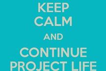 Project Life:  Get It Done / by Ann Gowgiel