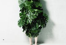 Green / by Adriana Hanna