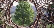 Kunst Land-Art / Land-Art en beelden in de natuur