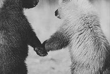 Togetherness / empathy