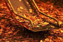 Autumn I'm in Love