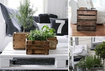 Decorate with Plants / Indoor and outdoor home decor greenery