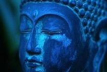 Indigo / Indigo is the color of intuition and perception and is helpful in opening the third eye.  / by Marie Felton