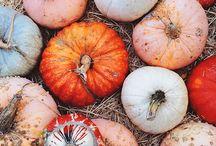 fall time fun time