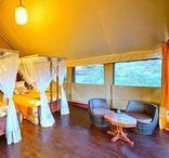 Serengeti Safari Lodge / The lodge is located in the heart of the famous Serengeti National Park, the Seronera Tana Spring Area. http://www.tanzaniawildcamps.com/accommodation/serengeti-safari-lodge/?adults=1&kids=0&rooms=1&date_from&date_to