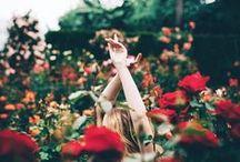 Flower / Kwiaty
