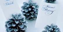 Winter Weddings / Are you dreaming of a #winter #wedding? Step into this Winter Wonderland of ideas to get you inspired ❄