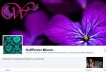 Our Fans' Facebook Cover Photos / Check the cover photos of businesses that are fans of Constant Contact! / by Constant Contact
