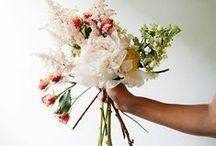 / Les Fleurs / / Flower • Flower • Flowers