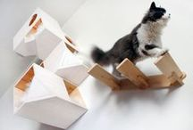 Home - For my cat ! / #cat #design