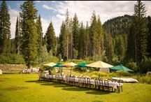 Solitude Events / by Solitude Mountain Resort