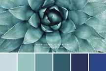 Color Palettes / Color palettes to help you brand your business. Inspiration for bright, blush, grays, bold, nuetrals, vintage, modern, warm, and cool color schemes.