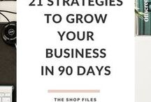 Business Growth / Ideas, tips, and inspiration to create business growth for entrepreneur run businesses. Business growth strategies and scaling your business from a solopreneur model to a business with a complete team or agency.
