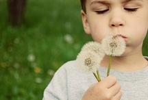 Homeschool - Nature Study / Teaching Your Homeschooling Children to Love Nature Through Art, Creativity, and Science