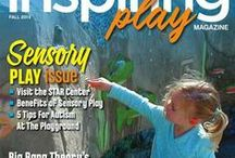 Issues of Inspiring Play