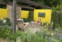 Colorful gardens/ Gradini colorate / Beautiful garden design./ Gradini frumoase create de peisagisti.