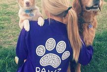 Pawz Saves the Dogs