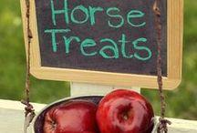 Homemade Horse Treats / by Lauren McCormick