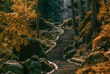 Wandern Deutschland / Wandern-Wanderwege