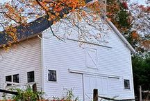 B & B: Barns and Birdhouses / They always catch my eye. / by Laurie Windley