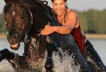 For the Love of Horses  /  I have pinned horses from around the world; many breeds that you may not be familiar with, and tips for caring for and handeling your horses... / by Kitty Poshepny-Johnson