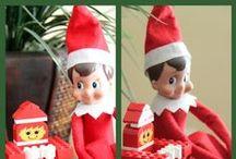 Elf on the Shelf / by Taryn Moore