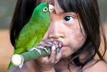 Birds of a Feather / by Kitty Poshepny-Johnson