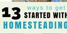 Homesteading Hero / Homesteading ideas, gardening, livestock, natural healthcare, MYO, sustainability, products and tutorials. Everything you need to know to run your own homestead.