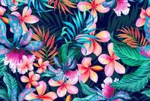Tropical Set / Jungle flora and fauna. Bright and exotic