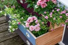 Spring Garden Inspiration / Looking for some inspiration for your spring garden, look no further. Spring signals the start of the busy period for gardeners as the new season gets underway.