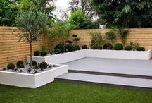 Inspiration: Low Maintenance Gardens