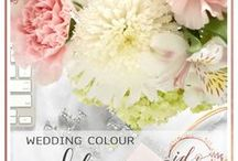 Wedding Colour scheme ideas / If you're trying to decide on a colour scheme for your wedding, this board will give you plenty of ideas