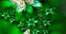 Green color..-zielony