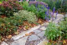 gardens / gardening spaces I wish were mine