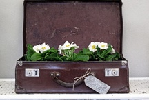 Vintage Suitcases / never saw an old suitcase I didn't love
